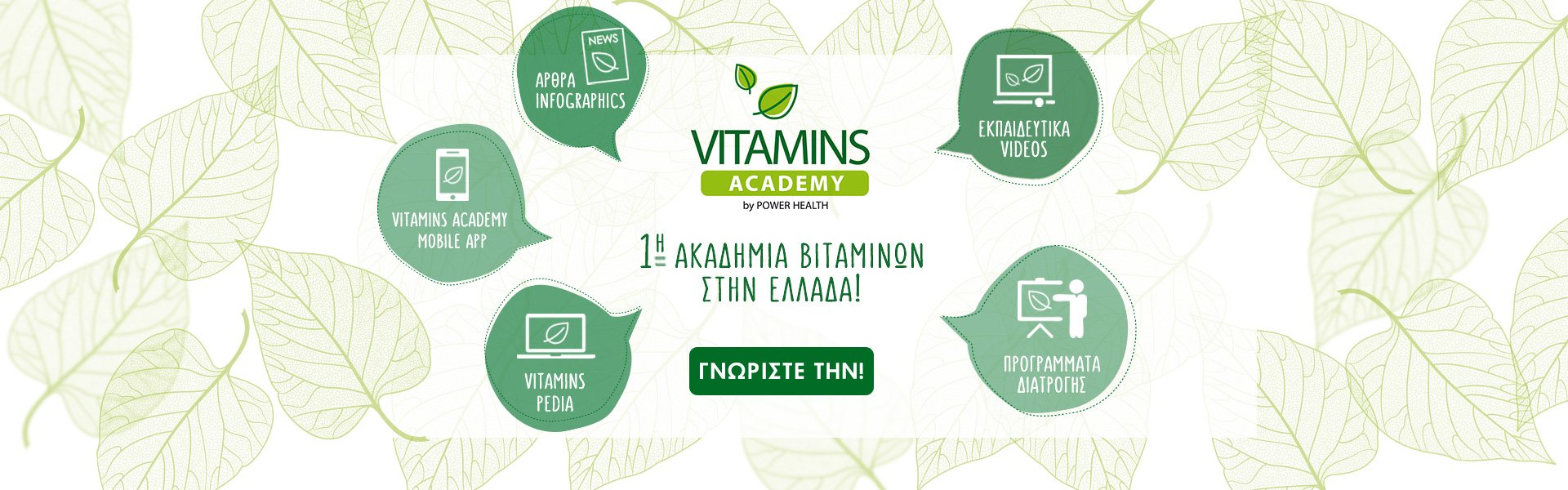 vitamins_academy_main_site